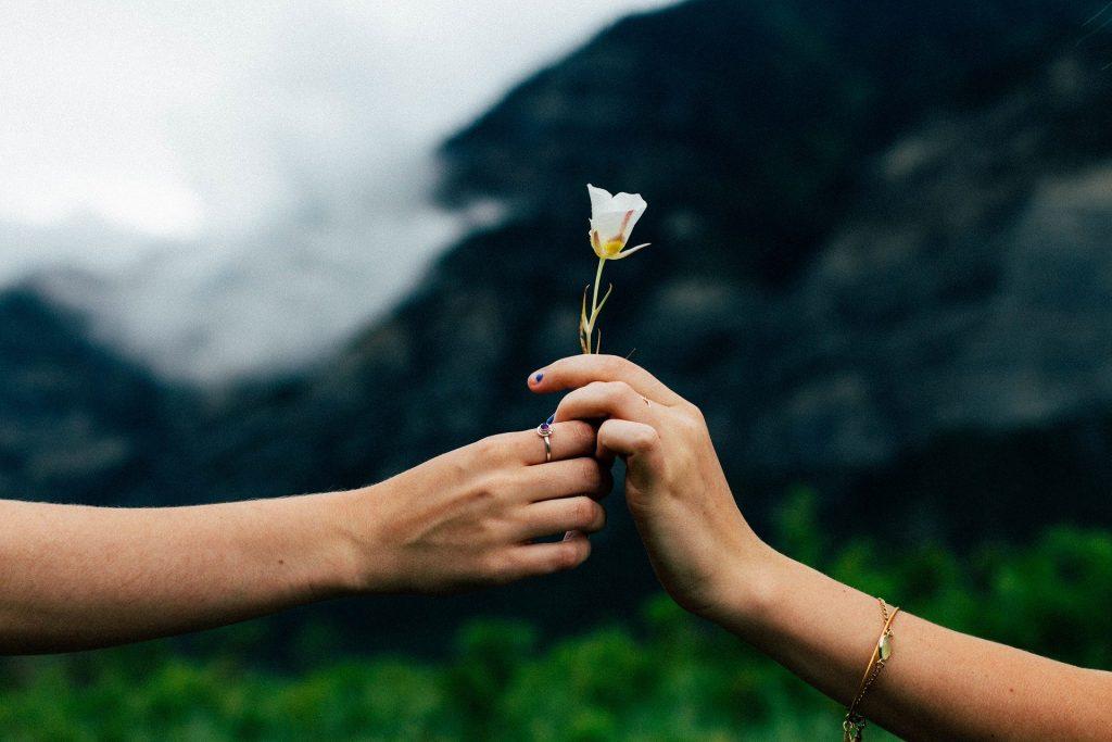 """""""La compasión es el amor cuando encuentra la sabiduría"""" Enric Benito"""